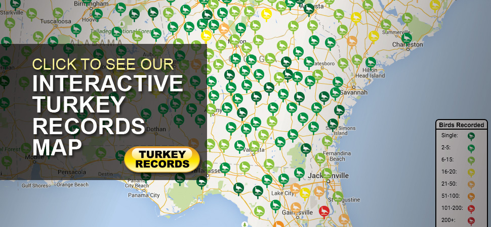 Turkey Records Map